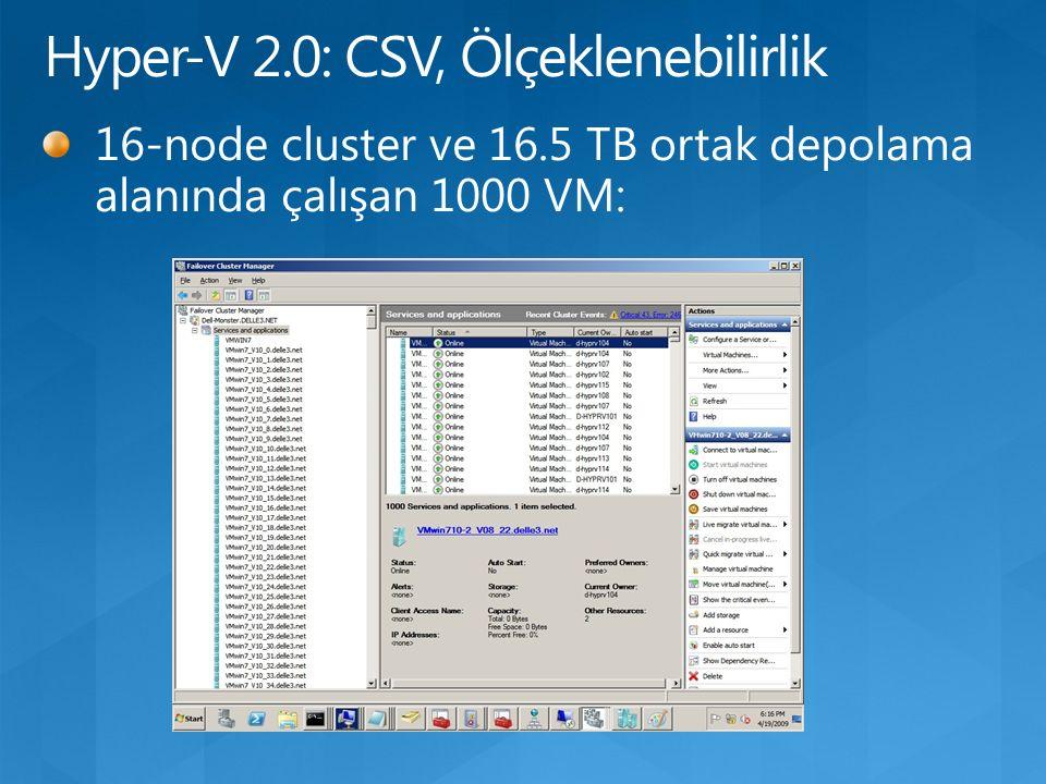 16-node cluster ve 16.5 TB ortak depolama alanında çalışan 1000 VM: