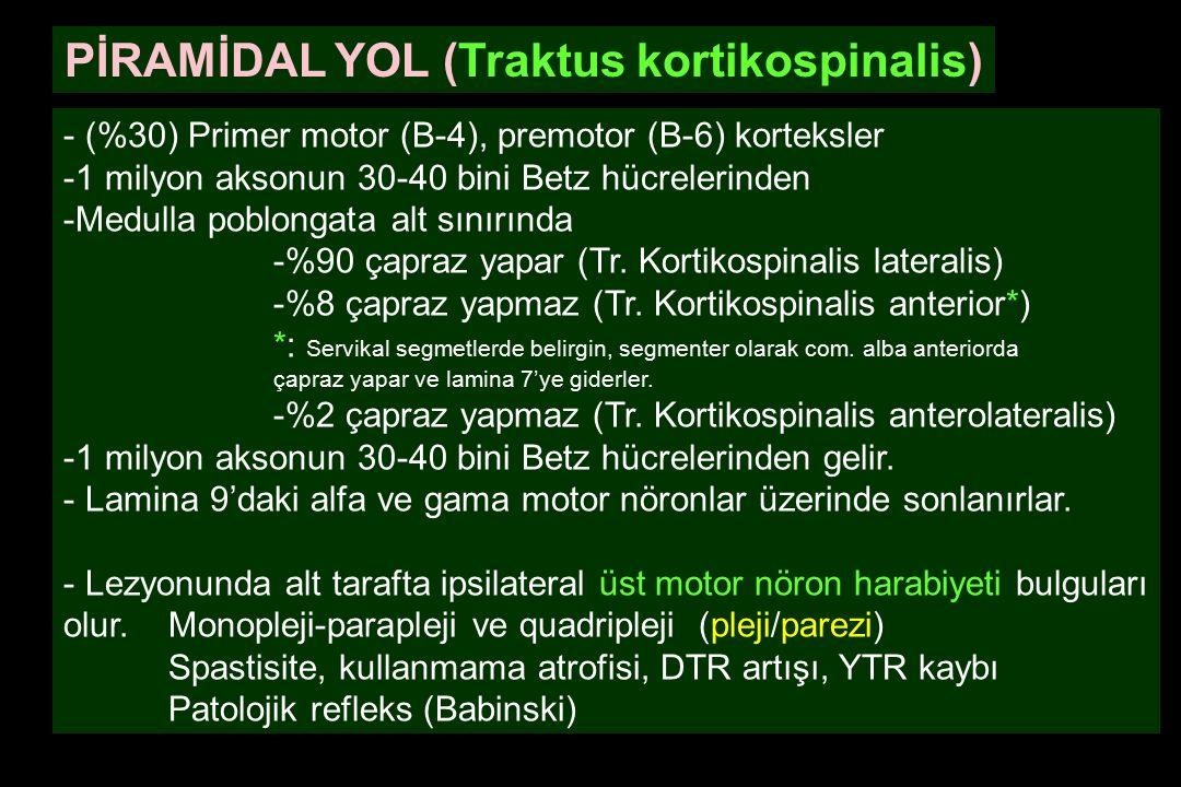 PİRAMİDAL YOL (Traktus kortikospinalis) - (%30) Primer motor (B-4), premotor (B-6) korteksler -1 milyon aksonun 30-40 bini Betz hücrelerinden -Medulla