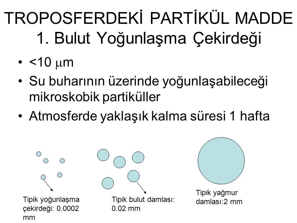 TROPOSFERDEKİ PARTİKÜL MADDE 1.