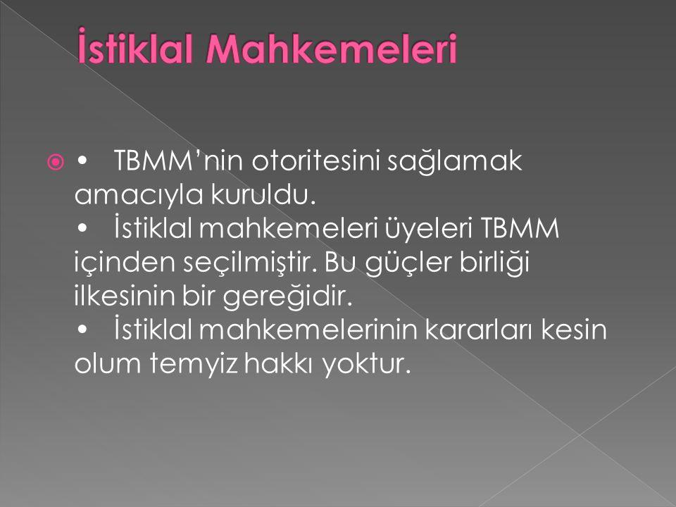  TBMM'nin otoritesini sağlamak amacıyla kuruldu.