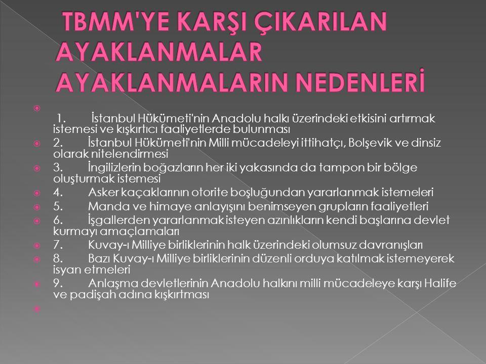  1. İstanbul Hükümeti'nin Anadolu halkı üzerindeki etkisini artırmak istemesi ve kışkırtıcı faaliyetlerde bulunması  2. İstanbul Hükümeti'nin Mill