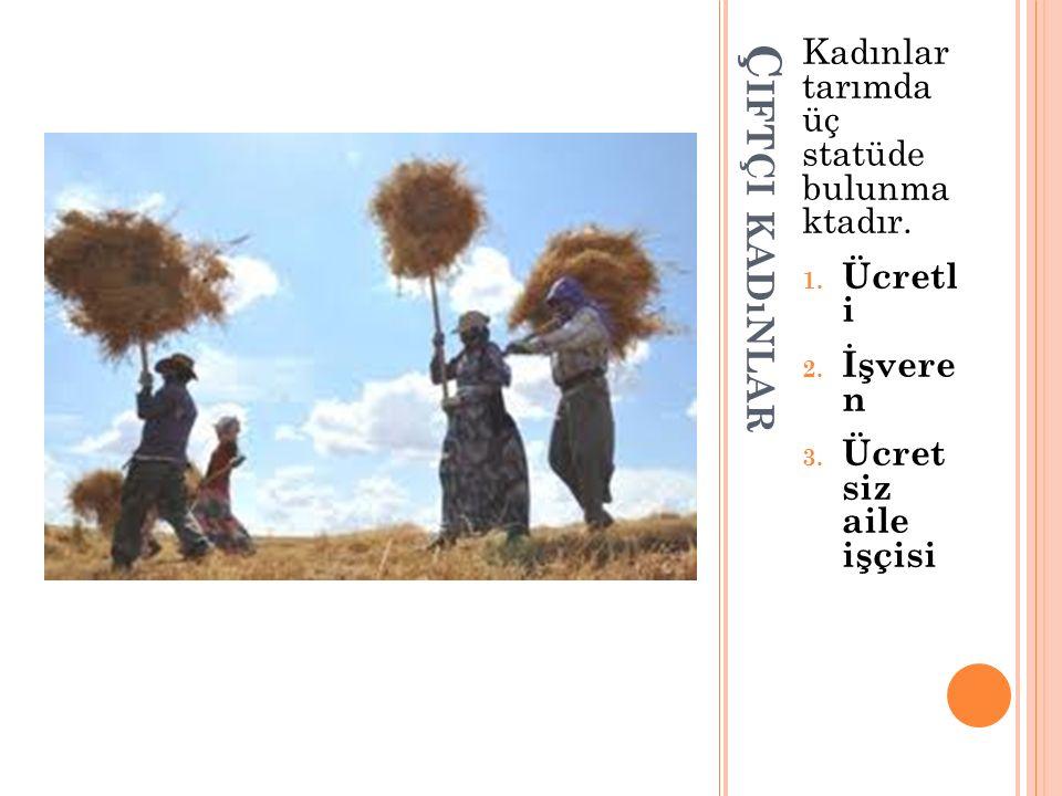 Ç IFTÇI KADıNLAR Kadınlar tarımda üç statüde bulunma ktadır. 1. Ücretl i 2. İşvere n 3. Ücret siz aile işçisi