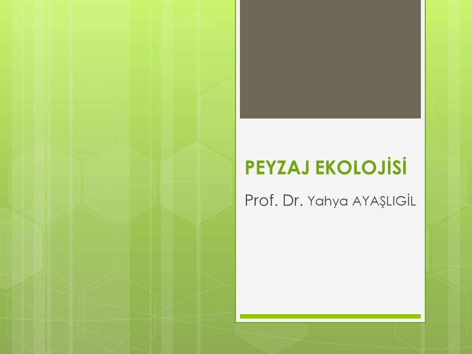 PEYZAJ EKOLOJİSİ Prof. Dr. Yahya AYAŞLIGİL