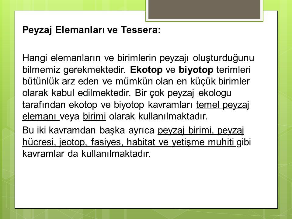 Peyzaj Elemanları ve Tessera: Hangi elemanların ve birimlerin peyzajı oluşturduğunu bilmemiz gerekmektedir. Ekotop ve biyotop terimleri bütünlük arz e