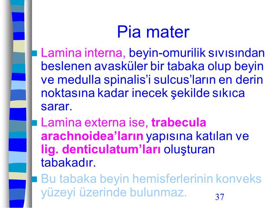 37 Pia mater Lamina interna, beyin-omurilik sıvısından beslenen avasküler bir tabaka olup beyin ve medulla spinalis'i sulcus'ların en derin noktasına