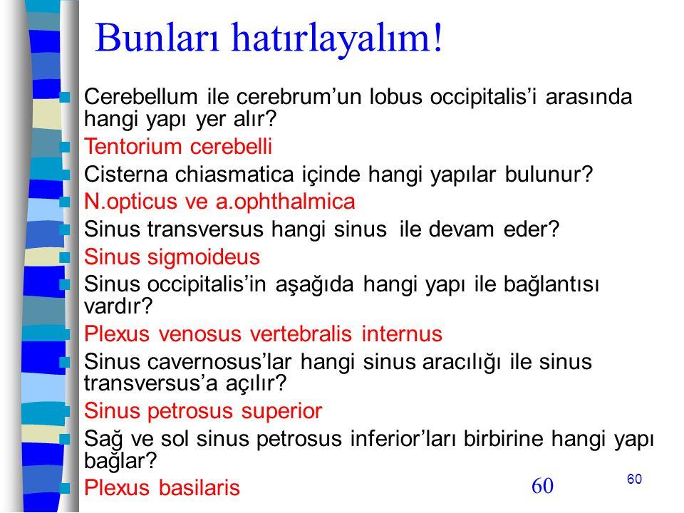 60 Bunları hatırlayalım! Cerebellum ile cerebrum'un lobus occipitalis'i arasında hangi yapı yer alır? Tentorium cerebelli Cisterna chiasmatica içinde