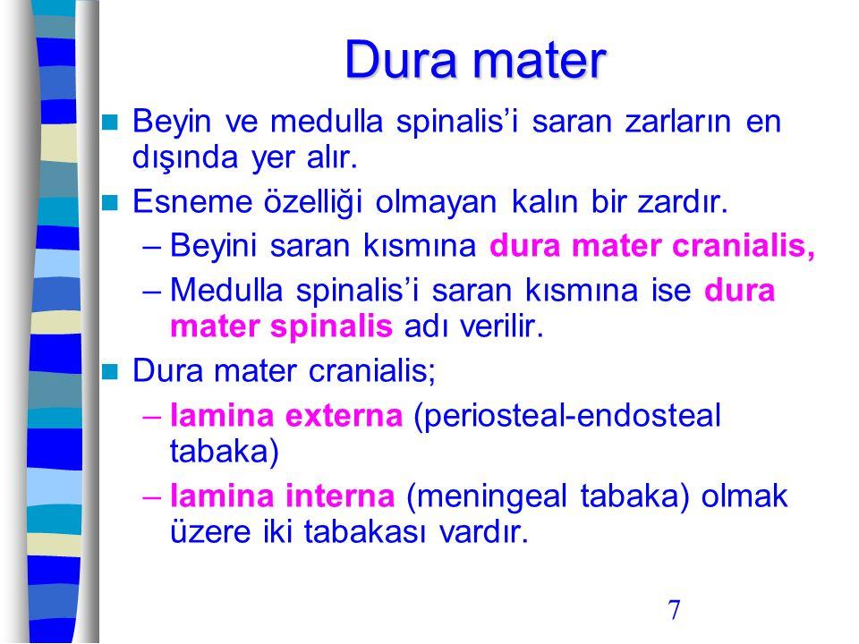7 Dura mater Beyin ve medulla spinalis'i saran zarların en dışında yer alır. Esneme özelliği olmayan kalın bir zardır. –Beyini saran kısmına dura mate