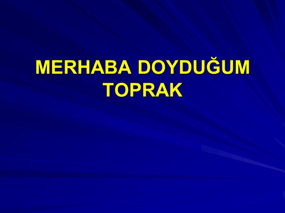 EN ÇOK GÖÇ VEREN İLLER Mardin Siirt Rize Hakkari Muş Trabzon Gümüşhane Sivas Ağrı Tunceli EN ÇOK GÖÇ ALAN İLLER İİİİstanbul İİİİzmit (Kocaeli) BBBBursa SSSSakarya (Adapazarı) AAAAdana AAAAntalya İİİİzmir GGGGaziantep AAAAydın DDDDenizli
