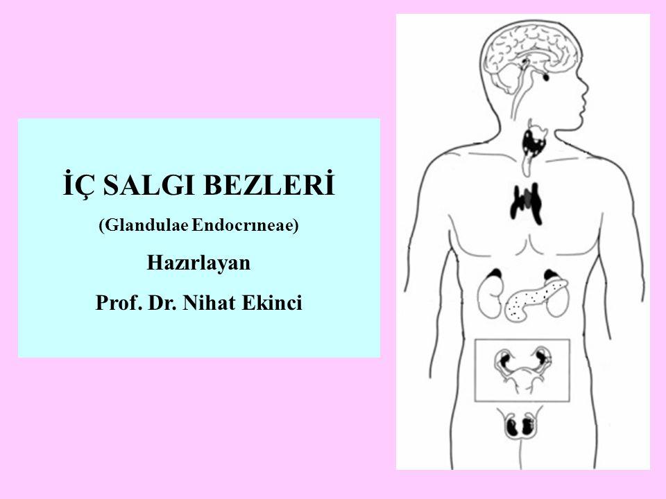 İÇ SALGI BEZLERİ (Glandulae Endocrıneae) Hazırlayan Prof. Dr. Nihat Ekinci