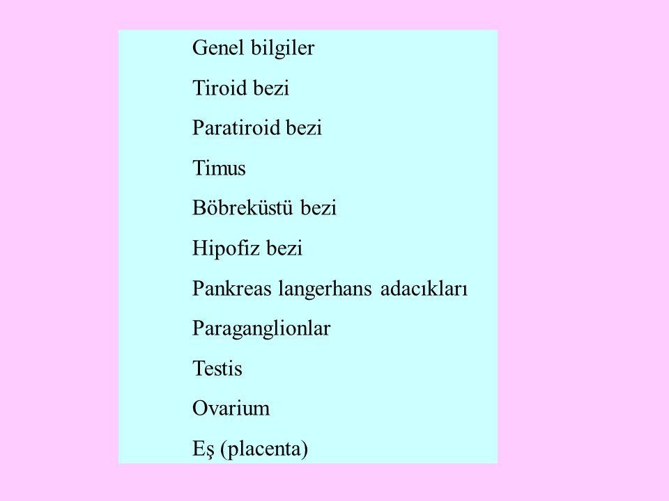 Genel bilgiler Tiroid bezi Paratiroid bezi Timus Böbreküstü bezi Hipofiz bezi Pankreas langerhans adacıkları Paraganglionlar Testis Ovarium Eş (placen