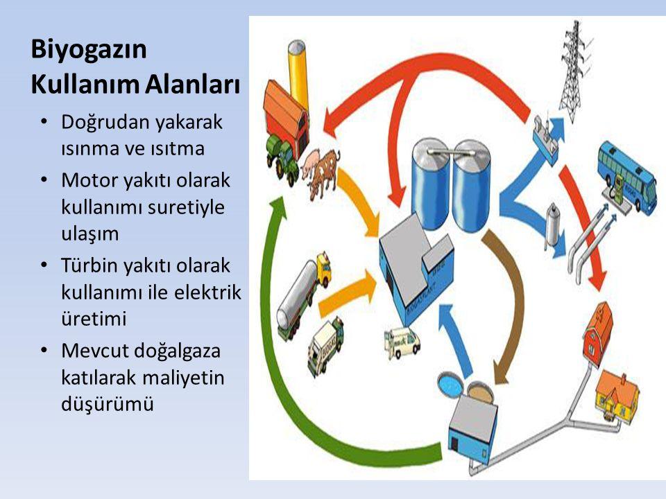 Biyogazın Kullanım Alanları Doğrudan yakarak ısınma ve ısıtma Motor yakıtı olarak kullanımı suretiyle ulaşım Türbin yakıtı olarak kullanımı ile elektr