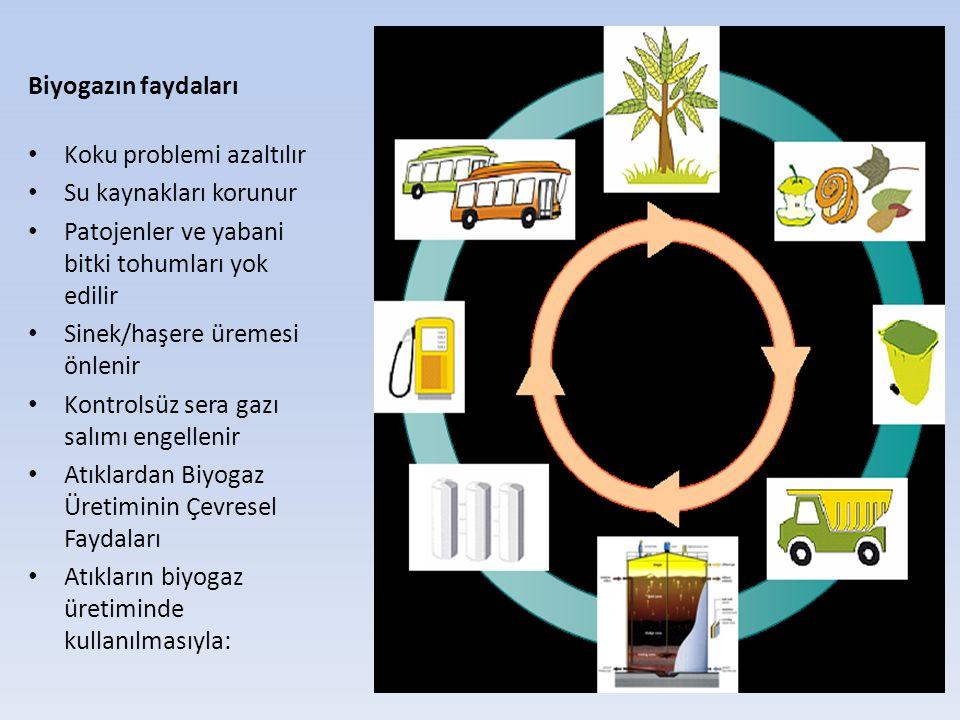 Biyogazın faydaları Koku problemi azaltılır Su kaynakları korunur Patojenler ve yabani bitki tohumları yok edilir Sinek/haşere üremesi önlenir Kontrol