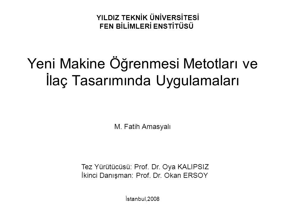 Yeni Makine Öğrenmesi Metotları ve İlaç Tasarımında Uygulamaları M. Fatih Amasyalı İstanbul,2008 Tez Yürütücüsü: Prof. Dr. Oya KALIPSIZ İkinci Danışma