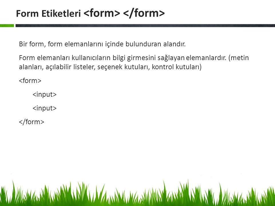 Bir form, form elemanlarını içinde bulunduran alandır. Form elemanları kullanıcıların bilgi girmesini sağlayan elemanlardır. (metin alanları, açılabil