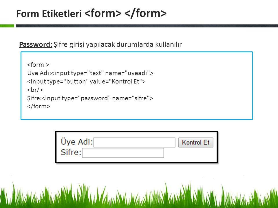 Password: Şifre girişi yapılacak durumlarda kullanılır Form Etiketleri Üye Adı: Şifre: