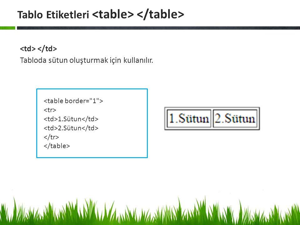 Tabloda sütun oluşturmak için kullanılır. Tablo Etiketleri 1.Sütun 2.Sütun
