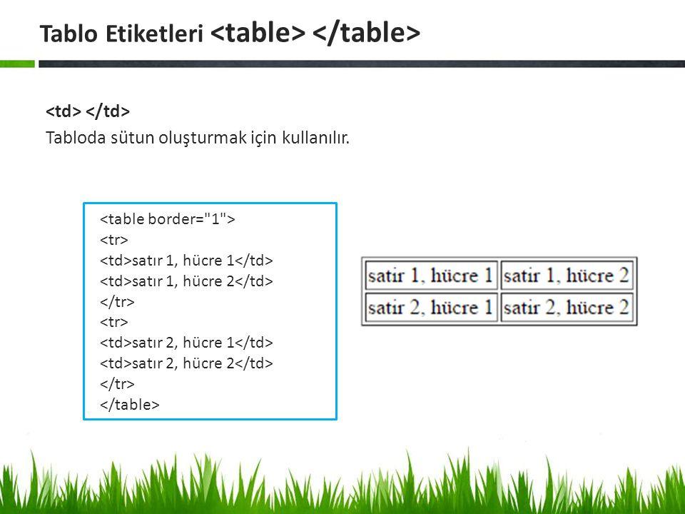 Tablo(table) Kullanarak Sayfa Tasarımı yapmak Tablo Etiketleri