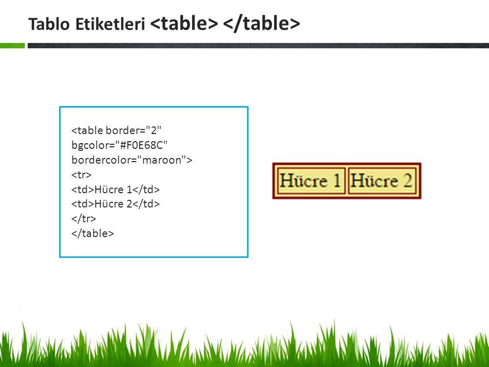 etiketi parametreleri: Tablonun pixel cinsinden genişliğini ayarlamak için kullanılır.