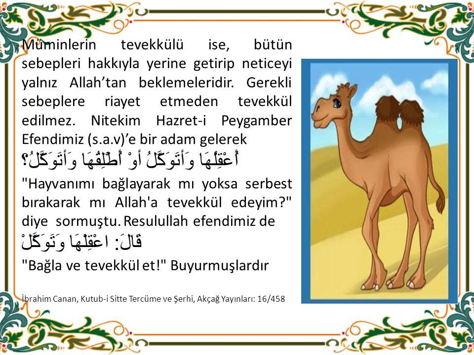 Müminlerin tevekkülü ise, bütün sebepleri hakkıyla yerine getirip neticeyi yalnız Allah'tan beklemeleridir.