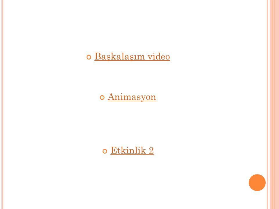 Başkalaşım video Animasyon Etkinlik 2