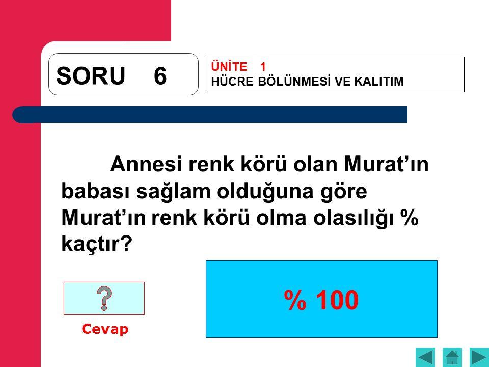 % 100 SORU6 Annesi renk körü olan Murat'ın babası sağlam olduğuna göre Murat'ın renk körü olma olasılığı % kaçtır.
