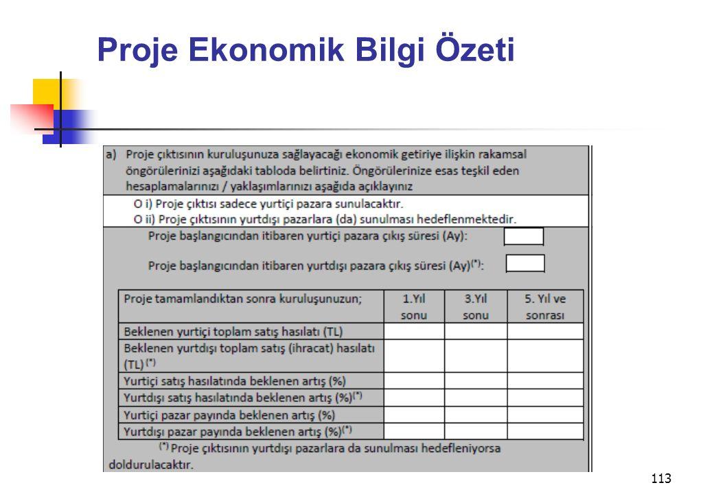 113 Proje Ekonomik Bilgi Özeti