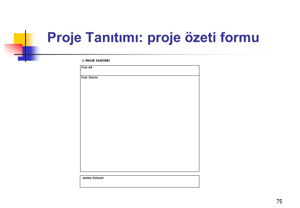 75 Proje Tanıtımı: proje özeti formu