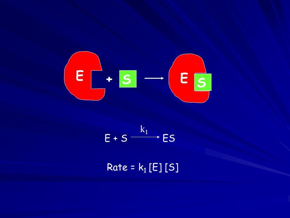 E + S ES k1k1 E S + E S Rate = k 1 [E] [S]