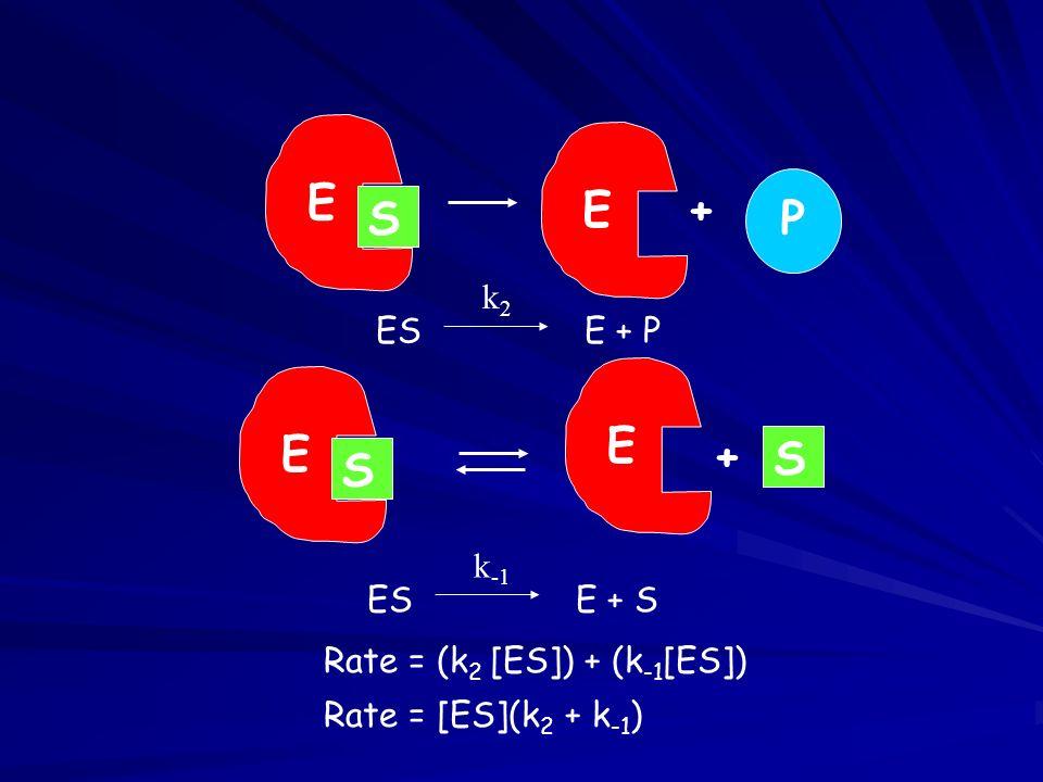 ESE + P k2k2 E S E+ P ESE + S k -1 E S + E S Rate = (k 2 [ES]) + (k -1 [ES]) Rate = [ES](k 2 + k -1 )
