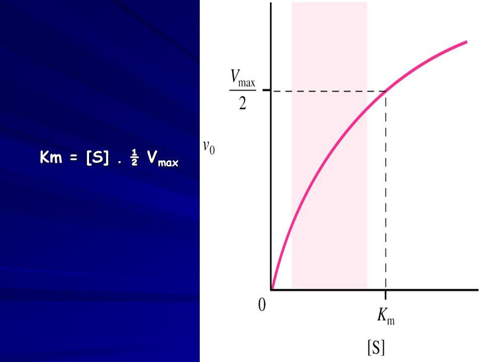 Km = [S]. ½ V max Km = [S]. ½ V max
