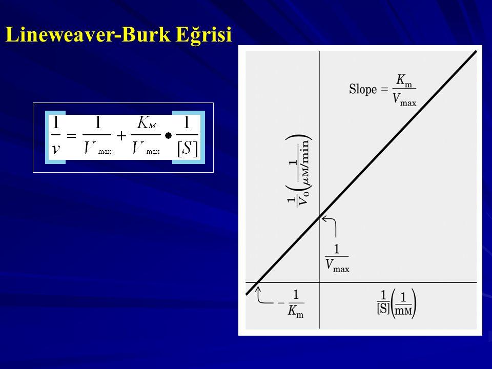 Lineweaver-Burk Eğrisi