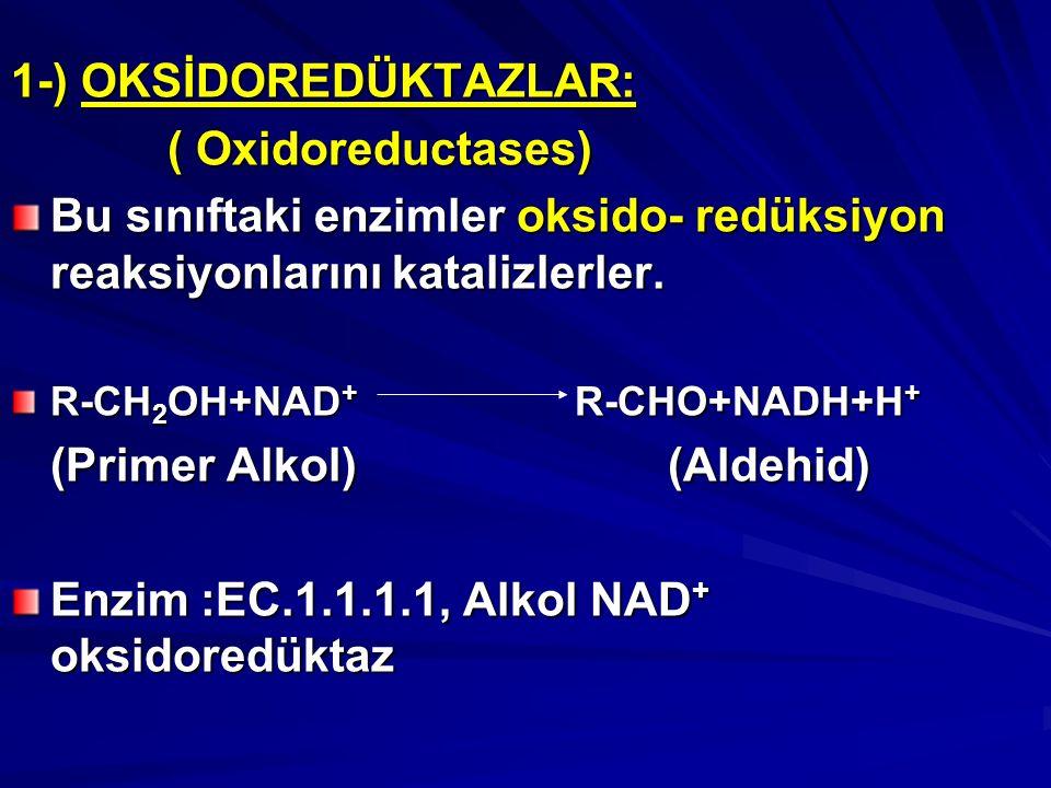 1-) OKSİDOREDÜKTAZLAR: ( Oxidoreductases) ( Oxidoreductases) Bu sınıftaki enzimler oksido- redüksiyon reaksiyonlarını katalizlerler.