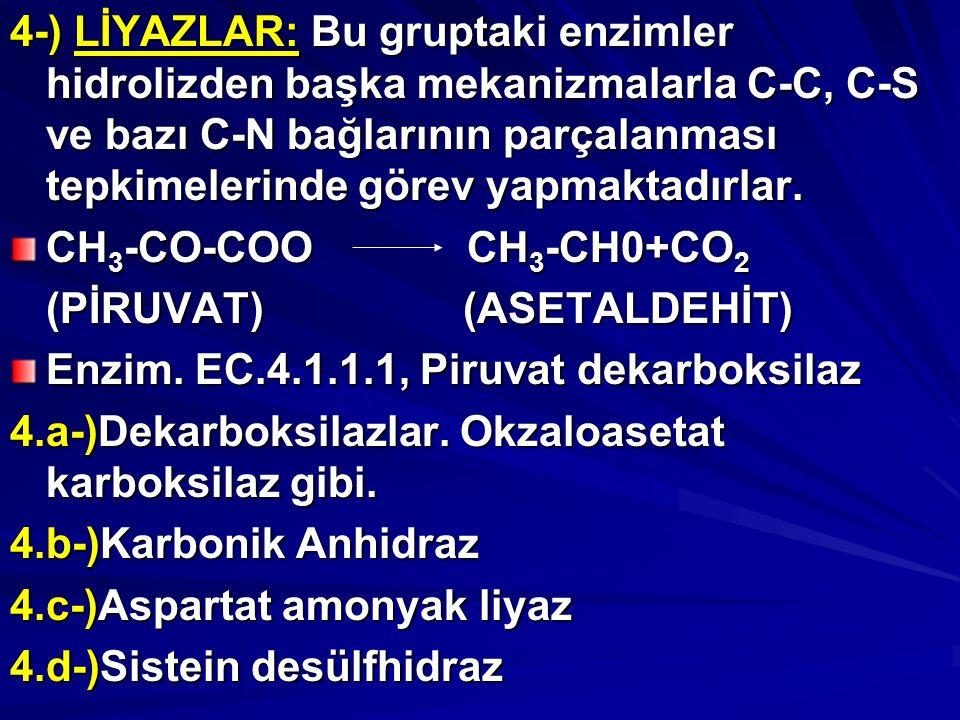 4-) LİYAZLAR: Bu gruptaki enzimler hidrolizden başka mekanizmalarla C-C, C-S ve bazı C-N bağlarının parçalanması tepkimelerinde görev yapmaktadırlar.