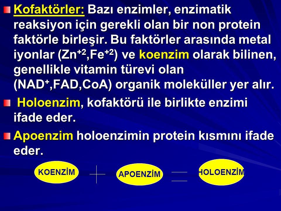 Kofaktörler: Bazı enzimler, enzimatik reaksiyon için gerekli olan bir non protein faktörle birleşir.