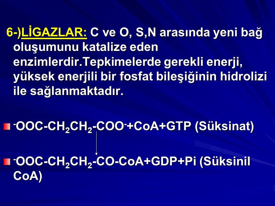 6-)LİGAZLAR: C ve O, S,N arasında yeni bağ oluşumunu katalize eden enzimlerdir.Tepkimelerde gerekli enerji, yüksek enerjili bir fosfat bileşiğinin hidrolizi ile sağlanmaktadır.