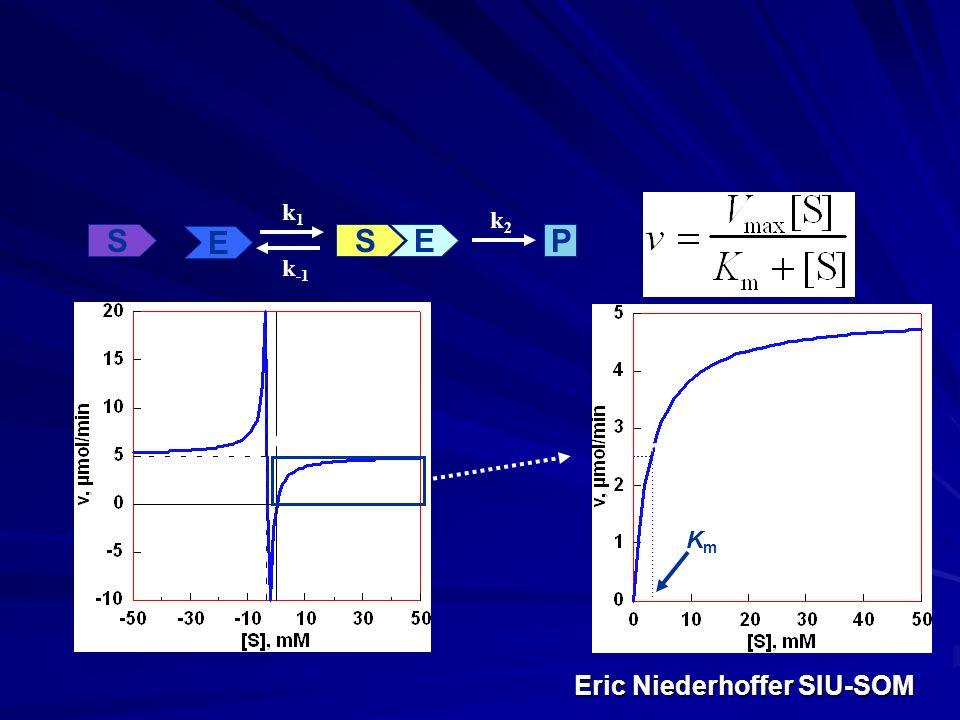 Eric Niederhoffer SIU-SOM Eric Niederhoffer SIU-SOM E S ES P k1k1 k -1 k2k2 -K m, V max KmKm 0.5V max