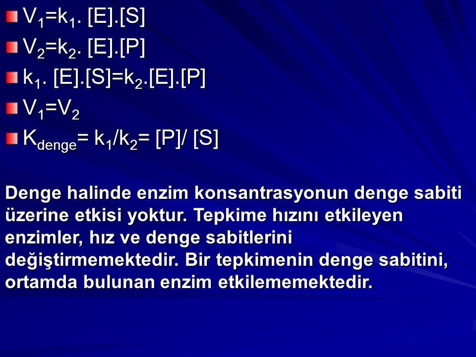 V 1 =k 1.[E].[S] V 2 =k 2. [E].[P] k 1.
