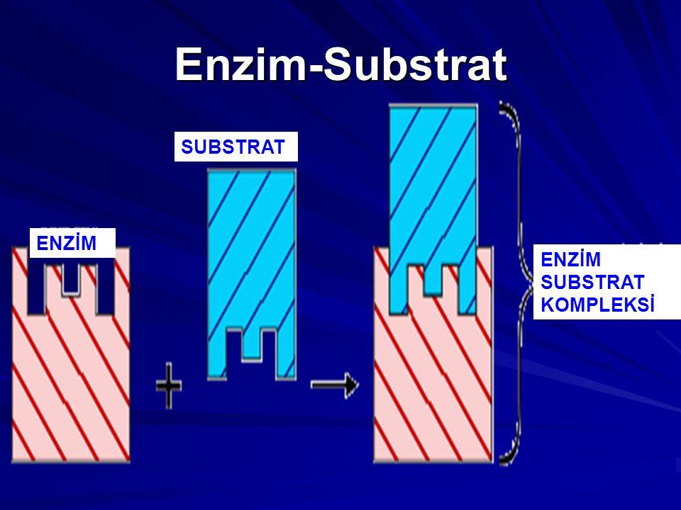 Enzim-Substrat ENZİM SUBSTRAT ENZİM SUBSTRAT KOMPLEKSİ