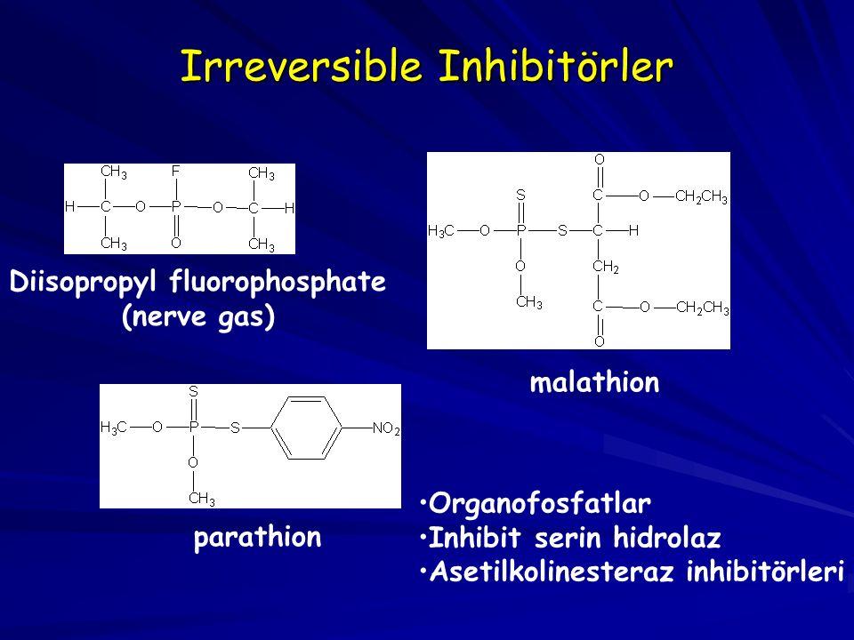 Irreversible Inhibitörler Diisopropyl fluorophosphate (nerve gas) parathion malathion Organofosfatlar Inhibit serin hidrolaz Asetilkolinesteraz inhibitörleri