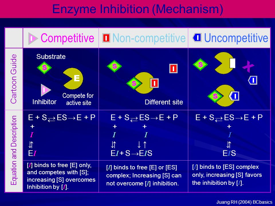 Enzyme Inhibition (Mechanism) CompetitiveNon-competitive Uncompetitive E E Different site Compete for active site Inhibitor Substrate Cartoon Guide Eq