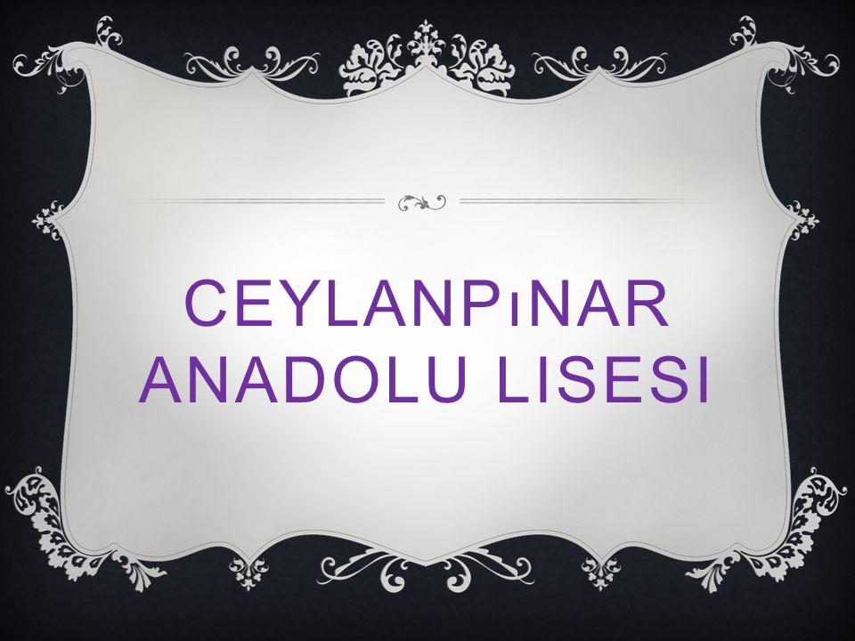 CEYLANPıNAR ANADOLU LISESI