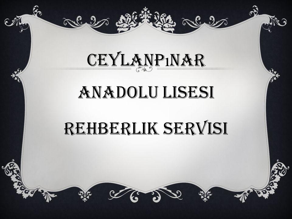 Ceylanp ı nar anadolu lisesi Rehberlik servisi