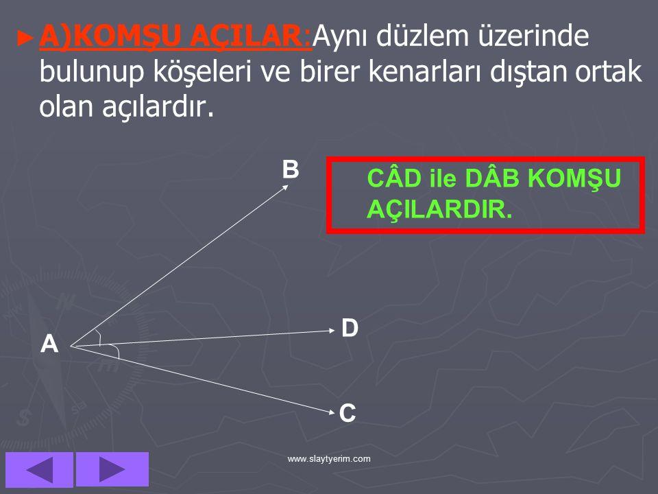 www.slaytyerim.com D)BAZI ÖZEL TANIMLI AÇILAR