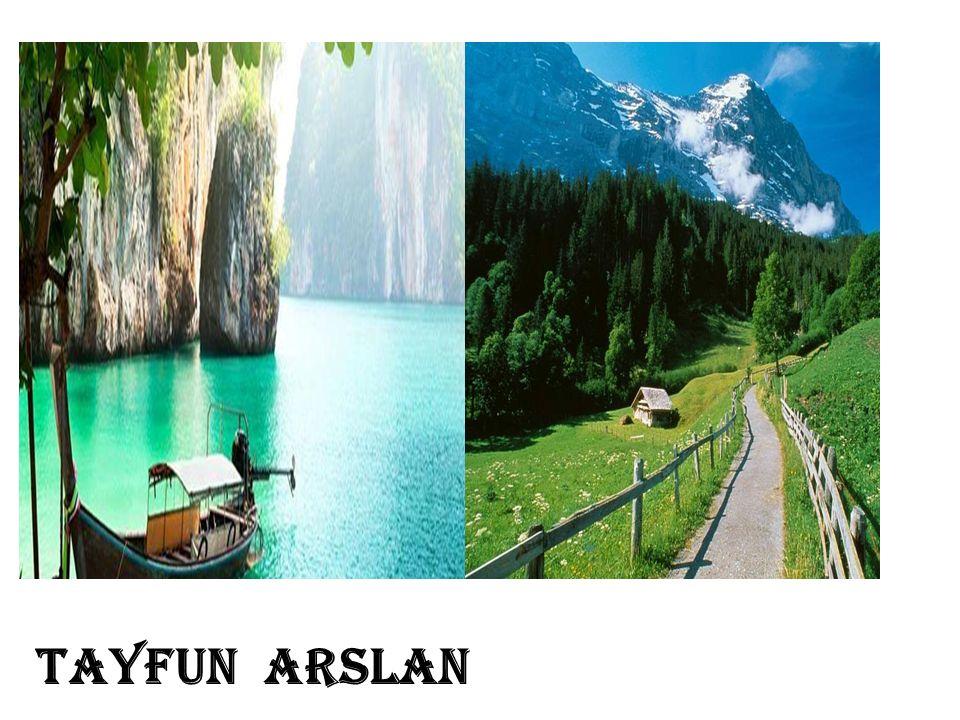 TAYFUN ARSLAN