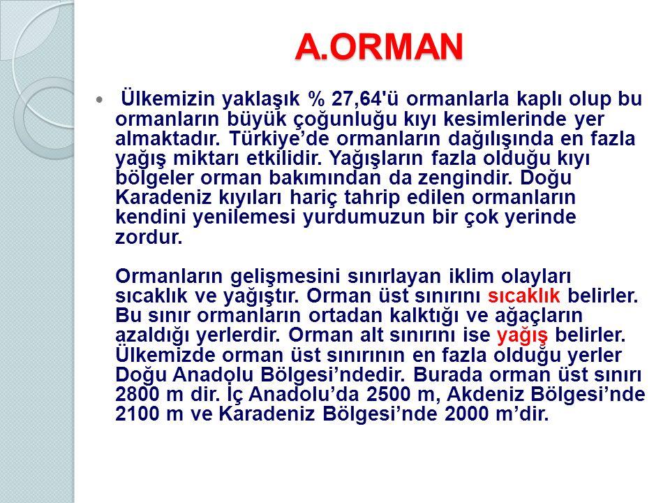 A.ORMAN Ülkemizin yaklaşık % 27,64'ü ormanlarla kaplı olup bu ormanların büyük çoğunluğu kıyı kesimlerinde yer almaktadır. Türkiye'de ormanların dağıl