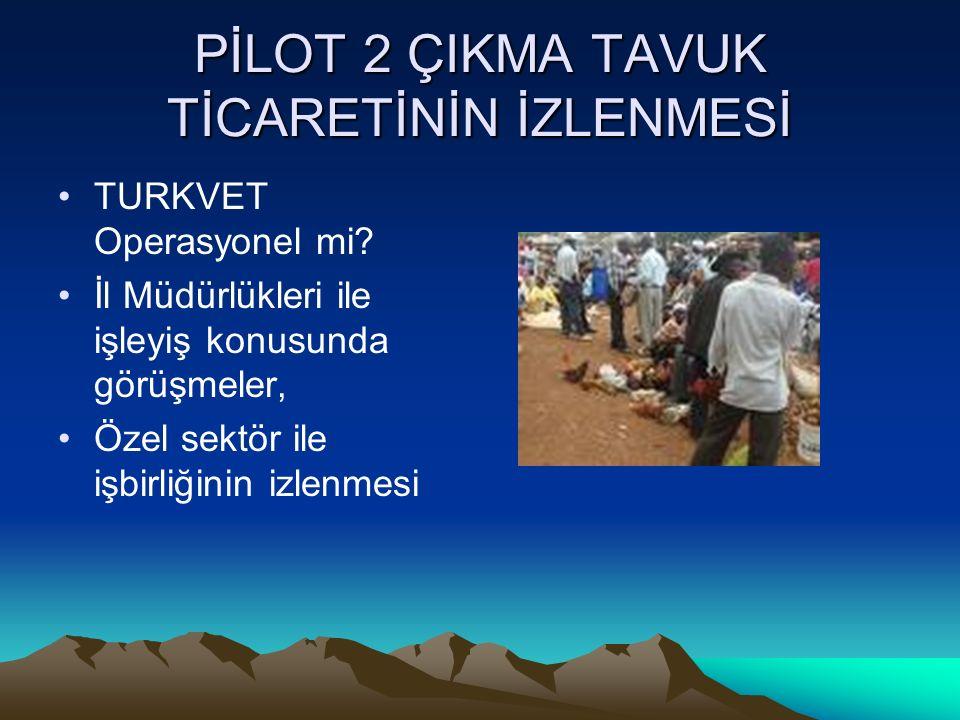 PİLOT 2 ÇIKMA TAVUK TİCARETİNİN İZLENMESİ TURKVET Operasyonel mi.