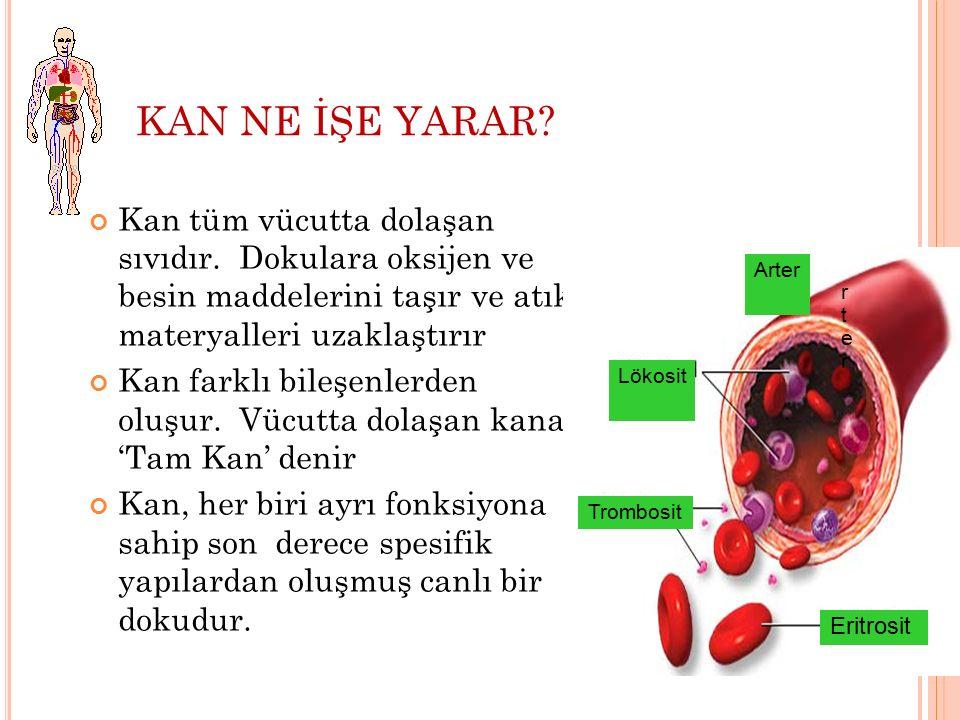 KAN NE İŞE YARAR? Kan tüm vücutta dolaşan sıvıdır. Dokulara oksijen ve besin maddelerini taşır ve atık materyalleri uzaklaştırır Kan farklı bileşenler