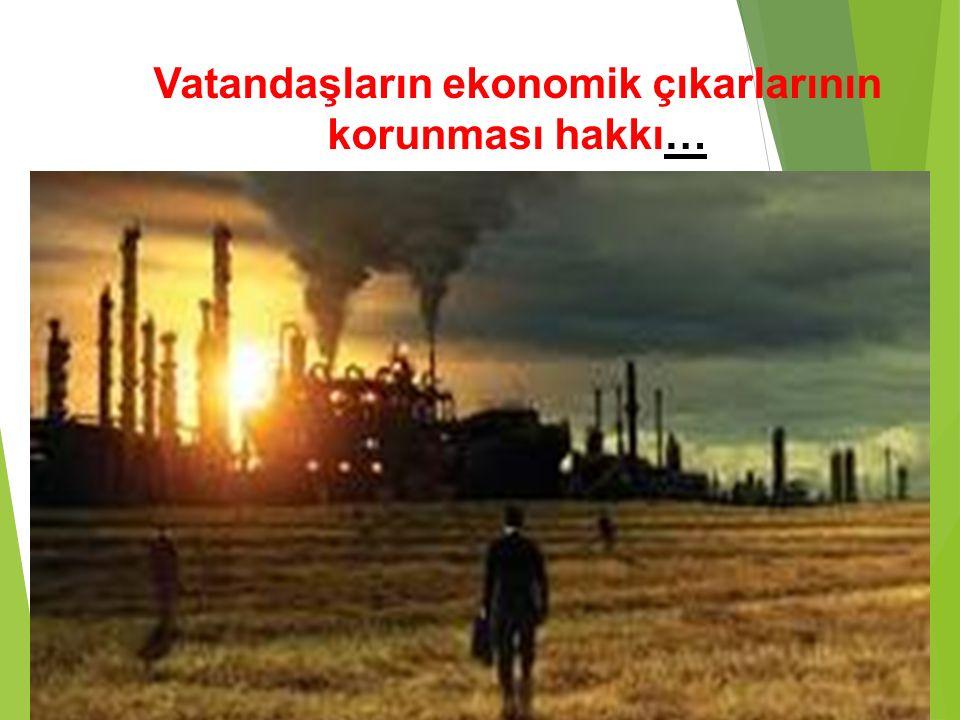 Vatandaşların ekonomik çıkarlarının korunması hakkı…