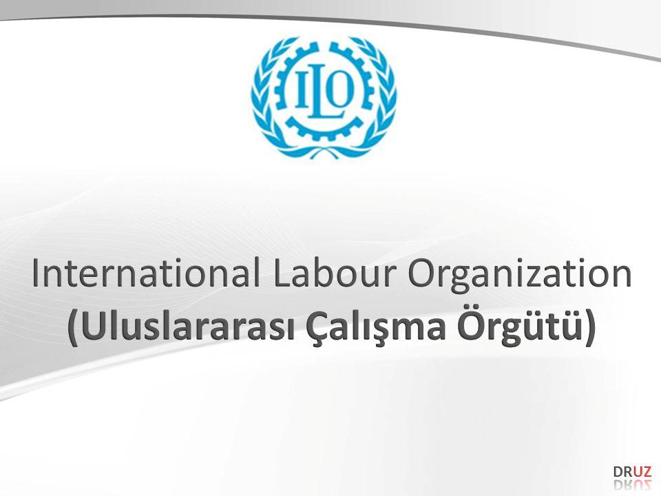 AMAÇ – 1 Konsey, ülke genelinde iş sağlığı ve güvenliği ile ilgili politika ve stratejilerin belirlenmesi için tavsiyelerde bulunmak üzere kurulmuştur.