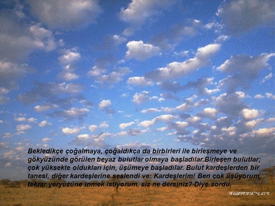 Bekledikçe çoğalmaya, çoğaldıkça da birbirleri ile birleşmeye ve gökyüzünde görülen beyaz bulutlar olmaya başladılar.Birleşen bulutlar; çok yüksekte o